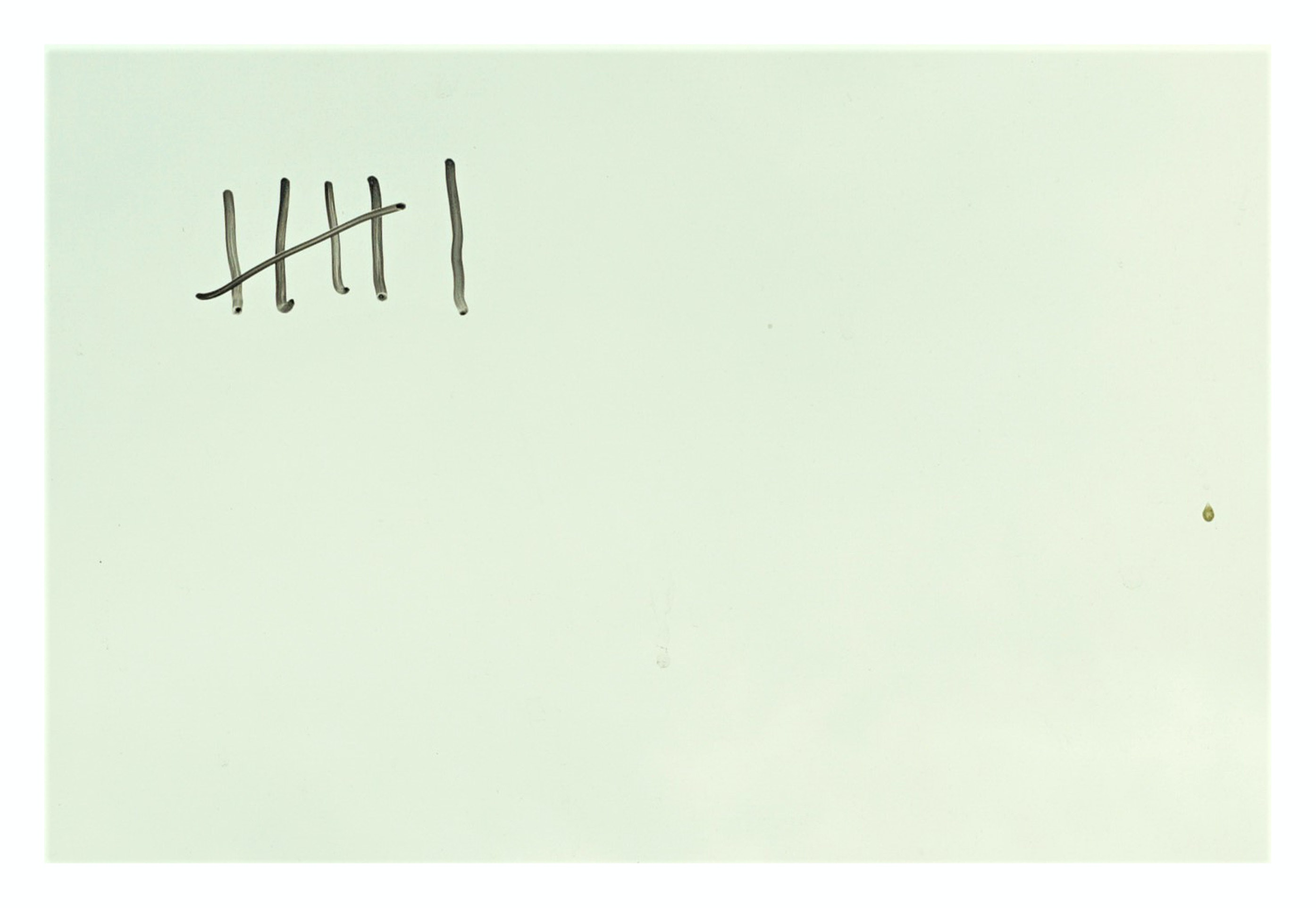 cv (6)
